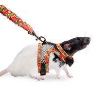 Karlie Postroj s vodítkem pro potkany velikost S
