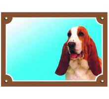 Barevná cedulka Pozor pes Baset