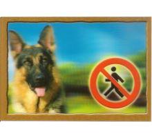 Cedulka 3D Pozor pes Německý ovčák