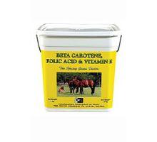 TRM pro koně Beta Carotene,Folic Acid&Vitamin E 3kg