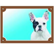 Barevná cedulka Pozor pes Francouzský buldoček světlý