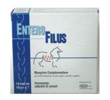 Enterofilus 12x10ml