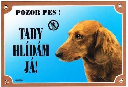 Barevná cedulka Pozor pes Jezevčík dlouhosrstý