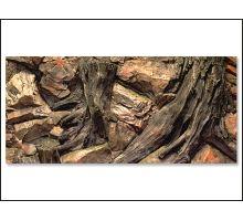Pozadí AE Root 100 x 50 cm 1ks