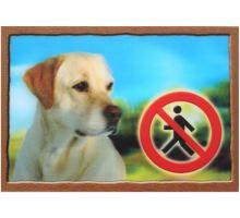Cedulka 3D Pozor pes Labradorský retrivr (béžový) VÝPRODEJ