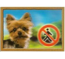 Cedulka 3D Pozor pes Jorkšírský terier
