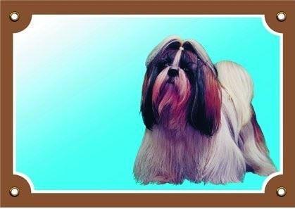 Barevná cedulka Pozor pes Shi - tzu