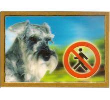 Cedulka 3D Pozor pes Knírač pepř a sůl