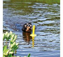 Mot-Aqua aportovací kolík do vody, plovoucí 29 cm