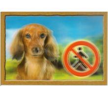 Cedulka 3D Pozor pes Jezevčík dlouhosrstý