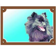 Barevná cedulka Pozor pes Černý špic