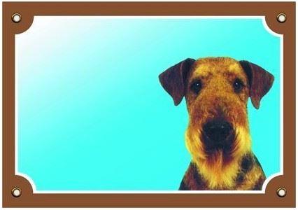 Barevná cedulka Pozor pes Erdelterier