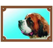 Barevná cedulka Pozor pes Bernardýn  VÝPRODEJ