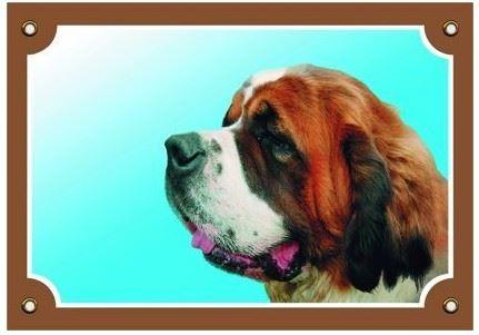 Barevná cedulka Pozor pes Bernardýn