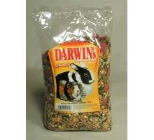 Darwin morče,králík standard 1kg
