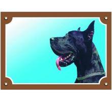 Barevná cedulka Pozor pes Doga černá