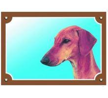 Barevná cedulka Pozor pes Azavak