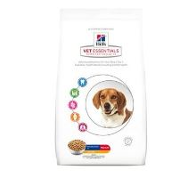 Hill's Canine VetEssentials Dry Mature Dental Medium & Large  2kg