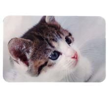 Prostírání pro kočku pod misky - fotka kočky 43 x 28 cm