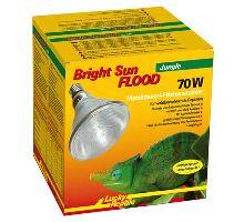 Lucky Reptile Bright Sun FLOOD Jungle