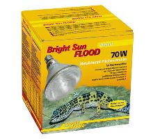 Lucky Reptile Bright Sun FLOOD Desert 70 W