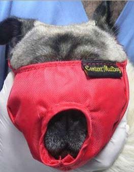 Náhubek fixační s přikrytím očí pro psy S